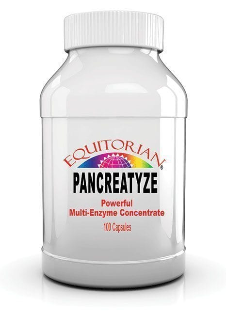 Pancreatyze
